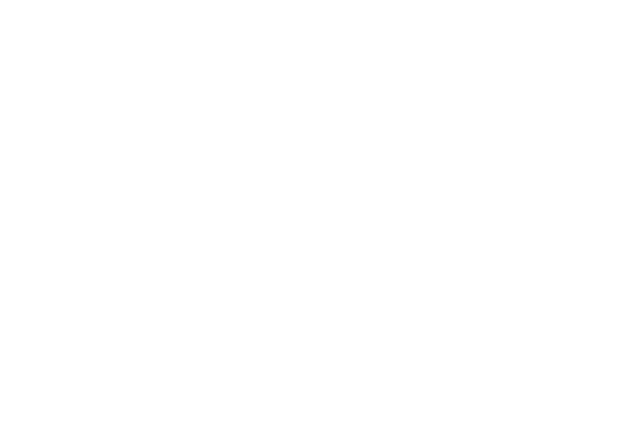 Belgian World Music Network